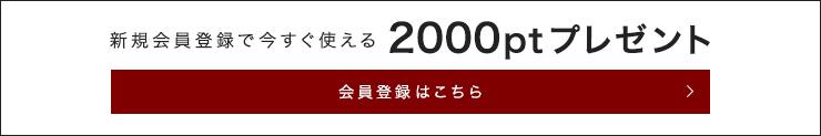 新規会員登録で今すぐ使える2000ptプレゼント